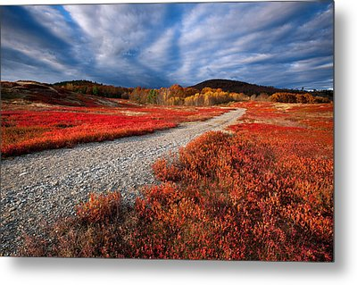 Silsby Plains Metal Print by Patrick Downey
