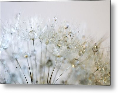 Silver And Gold Metal Print by Marianna Mills
