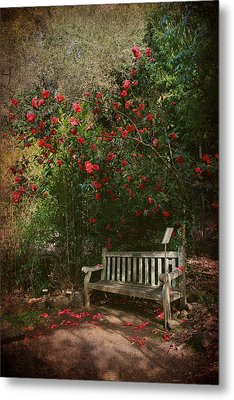 Sit With Me Here Metal Print by Laurie Search