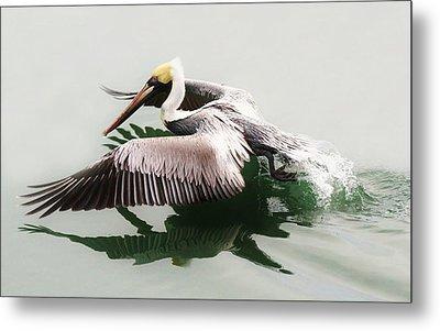 Skimming Across The Water Metal Print by Paulette Thomas