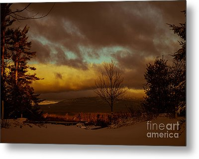 Sky High Metal Print by Sue OConnor