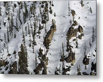 Snow-covered Canyon Walls In Yellowstone National Park Metal Print by Bruce Gourley