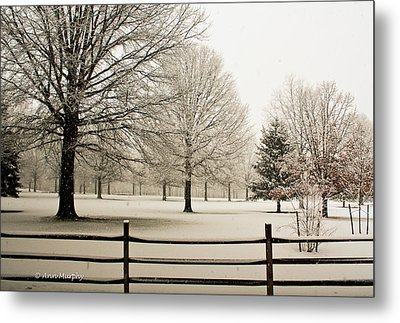 Metal Print featuring the photograph Snow-covered Landscape by Ann Murphy