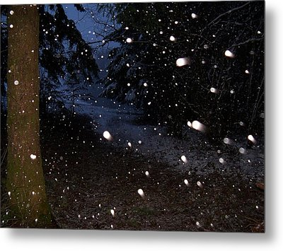 Snow Dance Metal Print by Steve Battle