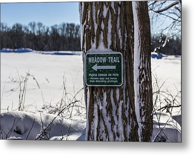 Snow In The Meadow Metal Print by Andrew Pacheco