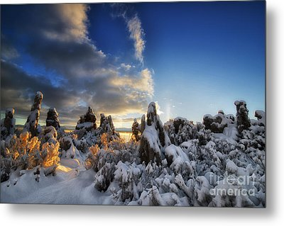 Snow On Tufa At Mono Lake Metal Print by Peter Dang