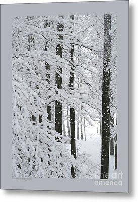 Snowing In The Woods Metal Print by Patricia Overmoyer