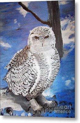 Snowy Owl . Metal Print