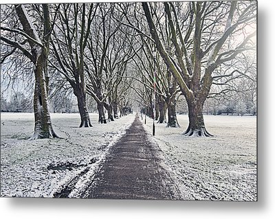 Snowy Path Through Jesus Green In Cambridge Uk Metal Print by Justin Paget