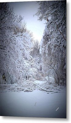 Metal Print featuring the photograph Snowy Scene by Karen Kersey