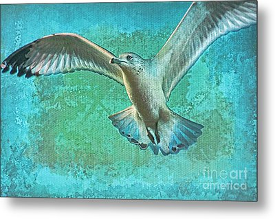 Soaring On Lifes Air Drafts Metal Print by Deborah Benoit