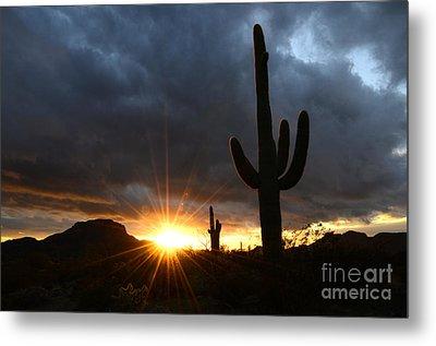 Sonoran Desert Rays Of Hope Metal Print by Bob Christopher