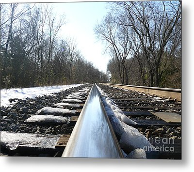 Southbound Metal Print by Jane Ford