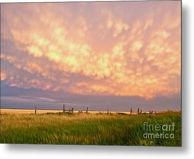 Southeastern New Mexico Metal Print by Roselynne Broussard