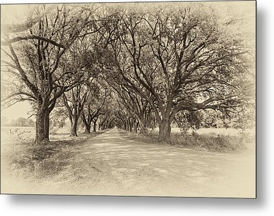Southern Journey Sepia Metal Print by Steve Harrington