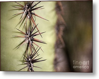 Spike On Guard Metal Print