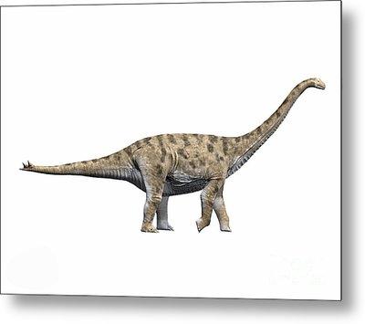 Spinophorosaurus Nigerensis, Middle Metal Print by Nobumichi Tamura