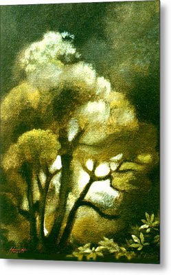 Spirit Of The Tarairi Tree Metal Print by Patricia Howitt