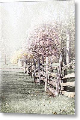 Spring Landscape With Fence Metal Print by Elena Elisseeva