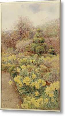 Spring   Raunds Cliffe Metal Print by George Samuel Elgood