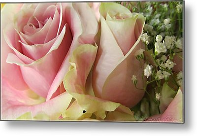 Spring Romance Pink Roses Metal Print by Danielle  Parent
