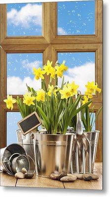 Spring Window Metal Print by Amanda Elwell