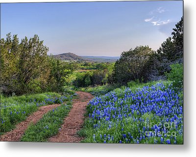 Springtime In The Hill Country Metal Print