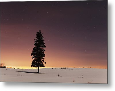 Stars In The Night Sky With Lone Tree Metal Print by Susan Dykstra