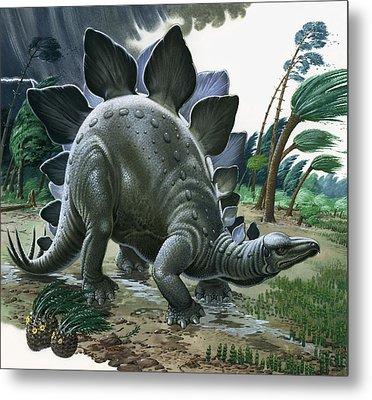 Stegosaurus Metal Print by English School