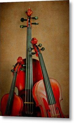 Stringed Trio Metal Print by David and Carol Kelly