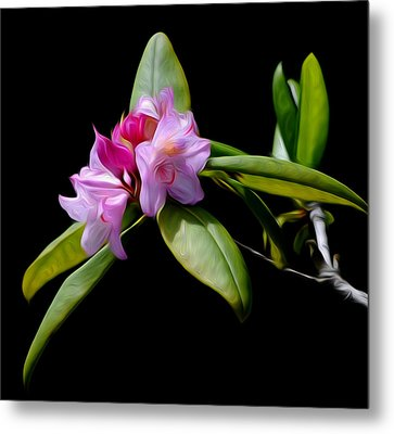 Metal Print featuring the digital art Summer Rhododendron by Timothy Hack