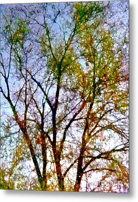 Sun Dappled Metal Print by Dale   Ford