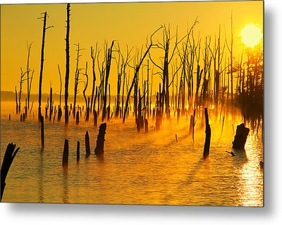 Sunrise Fog Shadows Metal Print