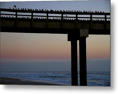 Sunrise Roll Call Metal Print by Kathy Ponce