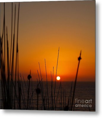 Metal Print featuring the photograph Sunrise Silhouette by Trena Mara