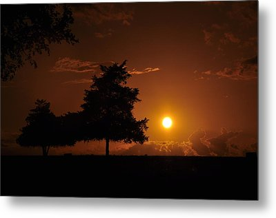 Sunset And Trees Metal Print by Cherie Haines