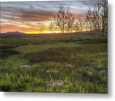 Sunset At Sunflower Flats Metal Print