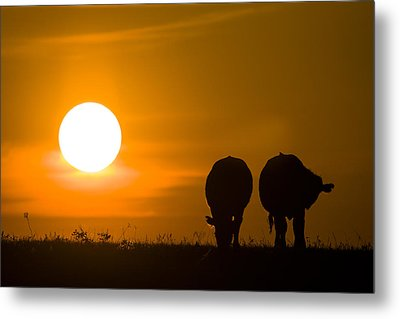 Sunset On The Flint Hills Metal Print by Scott Bean
