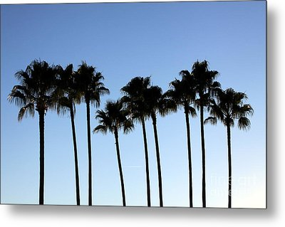 Metal Print featuring the photograph Sunset Palms by Chris Thomas