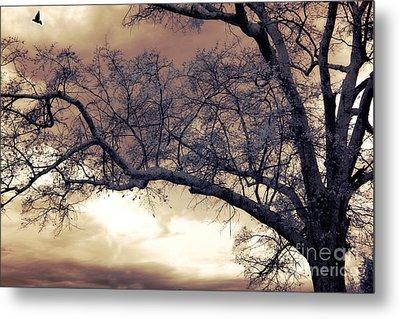 Surreal Fantasy Gothic South Carolina Tree Bird Metal Print