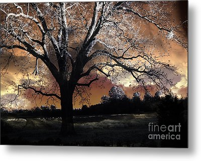 Surreal Fantasy Gothic Trees Nature Sunset Metal Print