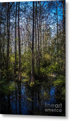 Swampland Metal Print by Marvin Spates