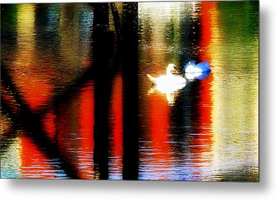 Metal Print featuring the photograph Swans Sojourn by Aurelio Zucco