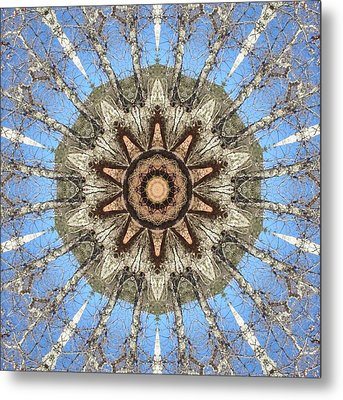 Metal Print featuring the digital art Sycamore Star Power by Trina Stephenson