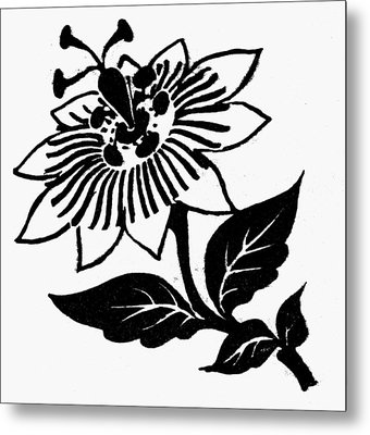 Symbol Passion Flower Metal Print by Granger