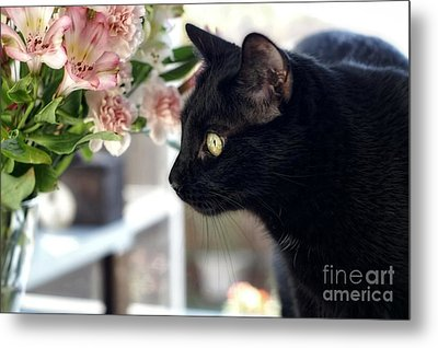Take Time To Smell The Flowers Metal Print by Peggy Hughes