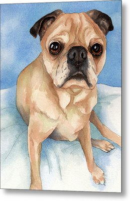 Tan And Black Pug Dog Metal Print by Cherilynn Wood