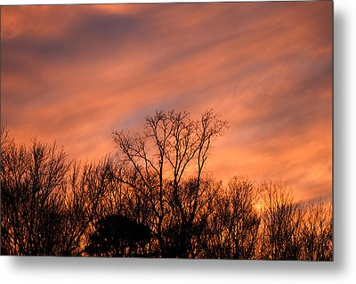 Metal Print featuring the photograph Tequila Sunset by Bill Swartwout