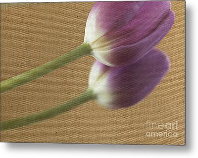 Textured Purpletulip Metal Print by Eden Baed