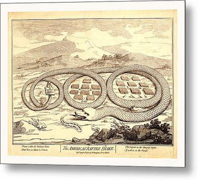 The American Rattle Snake, En Sanguine Engraving Shows Metal Print by Litz Collection